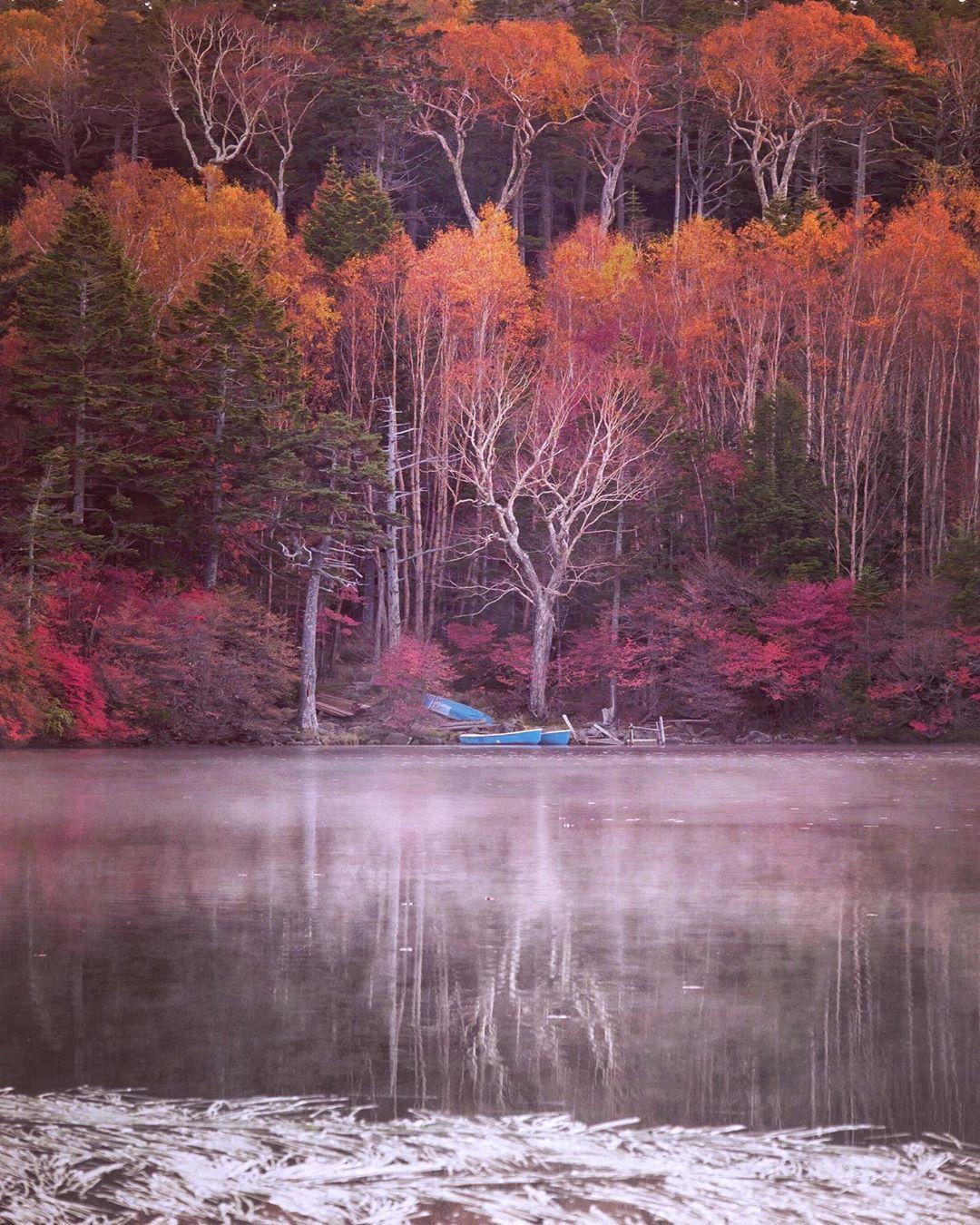 Красота японской природы на снимках Макико Самедзима