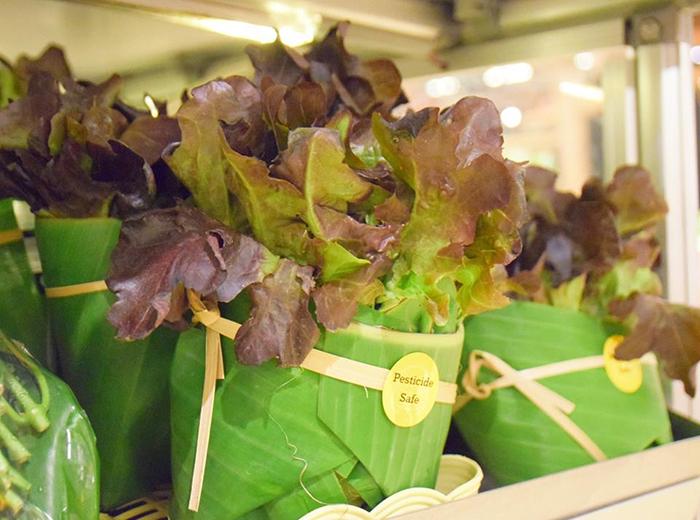 В Азии стали использовать банановые листья для упаковки овощей
