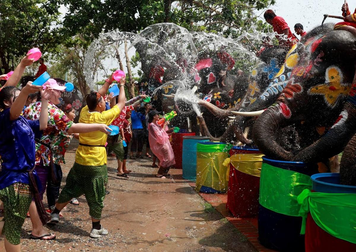 Слоны на фестивале воды в Таиланде