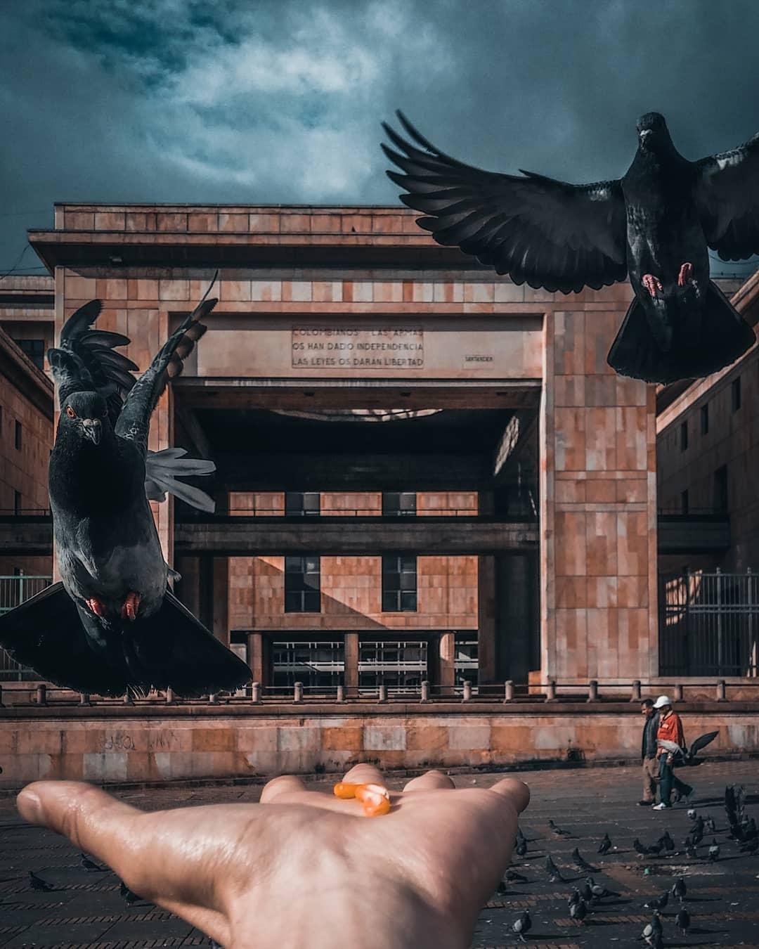 Городские пейзажи и архитектура на снимках Альфонсо Леона