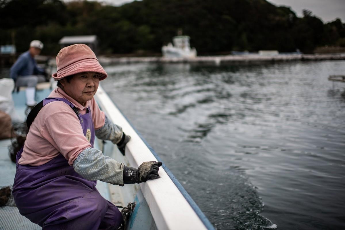 На ферме по выращиванию жемчуга в Японии