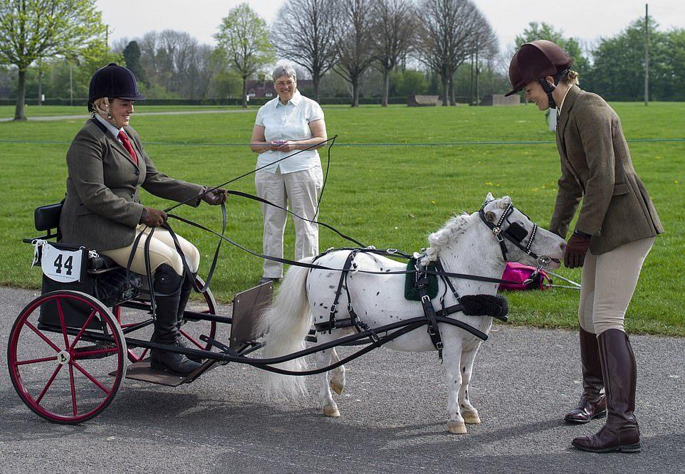 Парад конных повозок в Великобритании