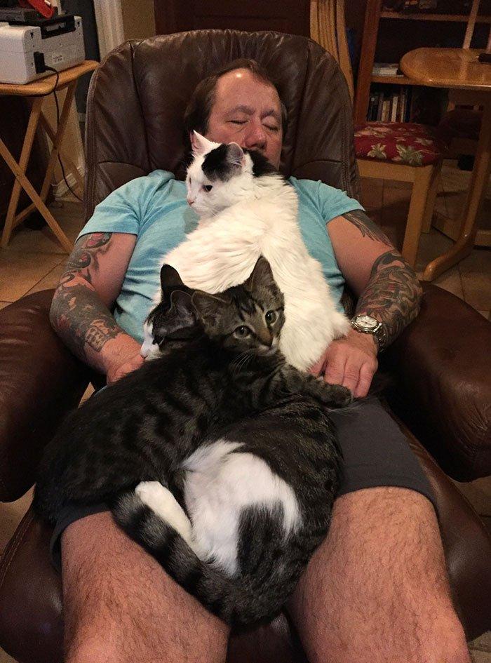 Сильные и независимые мужчины с котиками