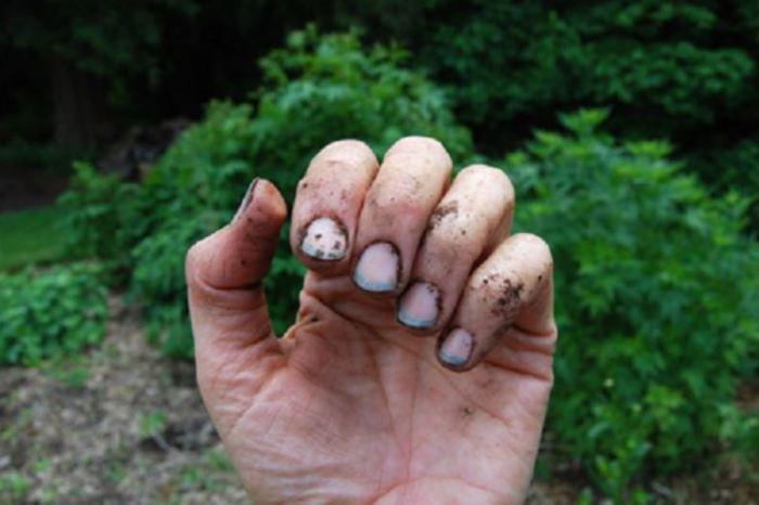 Способы использования мыла для бытовых проблем