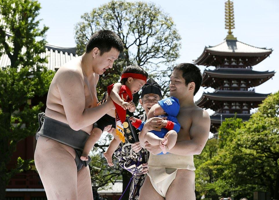 Nazikumo fesztivál, ahol a sumoisták sírnak