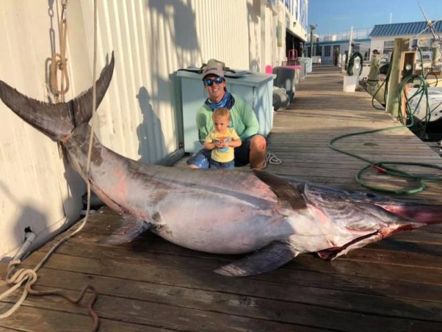 Барбекю из огромной меч-рыбы