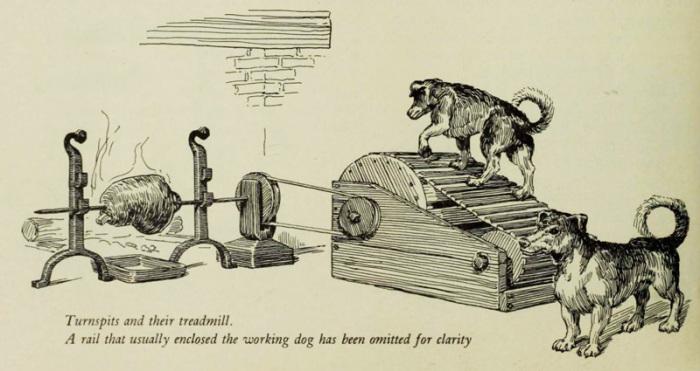 Особенности собачьей работы в прошлом