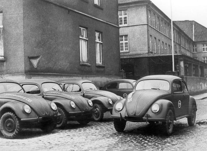 A háború utáni bogarak