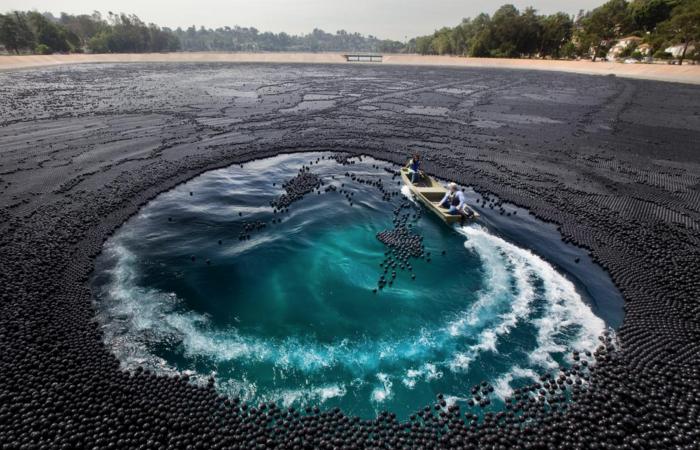 В водохранилище Лос-Анджелеса сбросили миллионы черных шаров