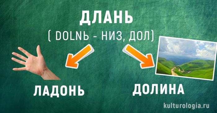История появления некоторых современных русских слов