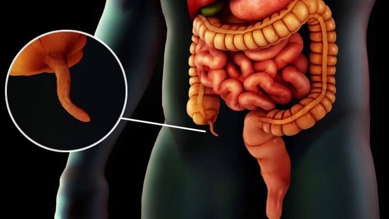 10 эволюционных изменений, которые оставили след на теле человека