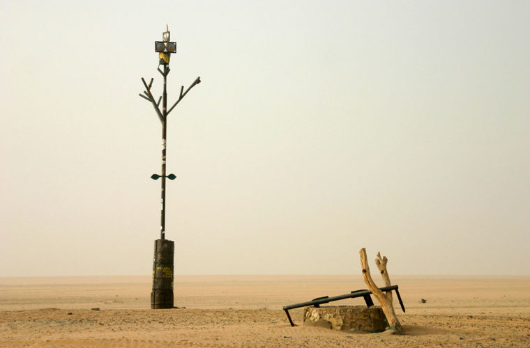 История самого одинокого дерева мира