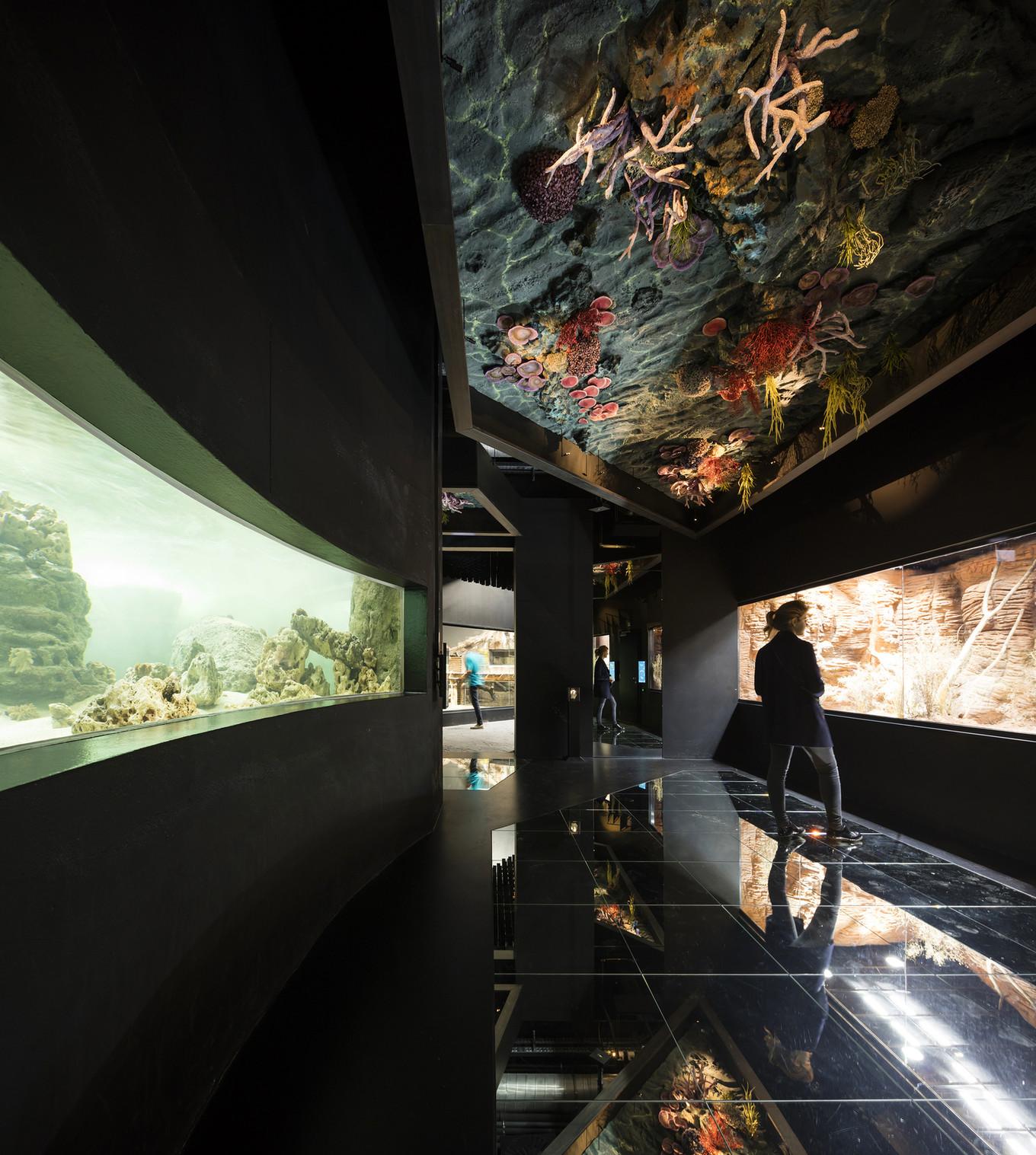 Океанариум Aquatis в Швейцарии