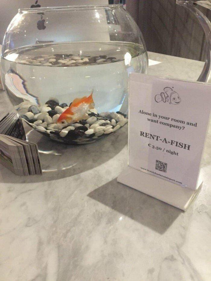 Приятные мелочи в отелях, которые создают комфорт для постояльцев