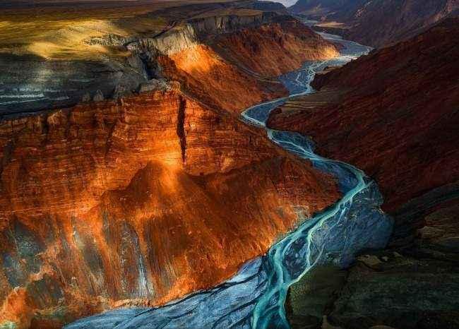 Шедевры с конкурса Лучшая фотография природы от National Geographic