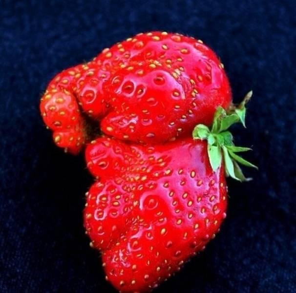 Некоторые овощи и фрукты — как живые
