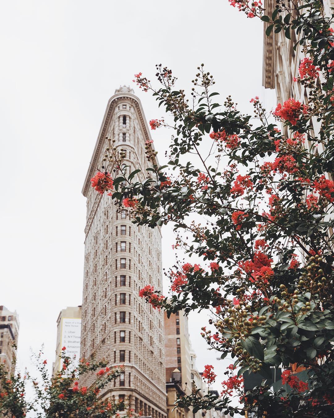 Уличные снимки Нью-Йорка от Джеффа Силбермана