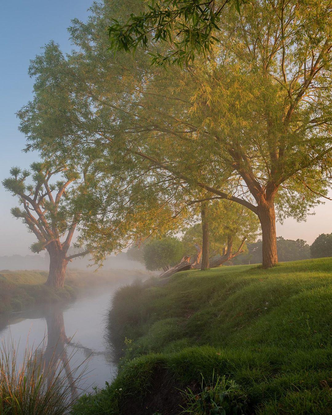 Природные пейзажи и животные на снимках Кэт Готард
