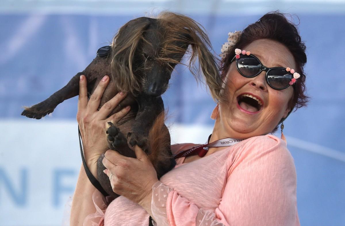 Конкурс за звание самой уродливой собаки в мире