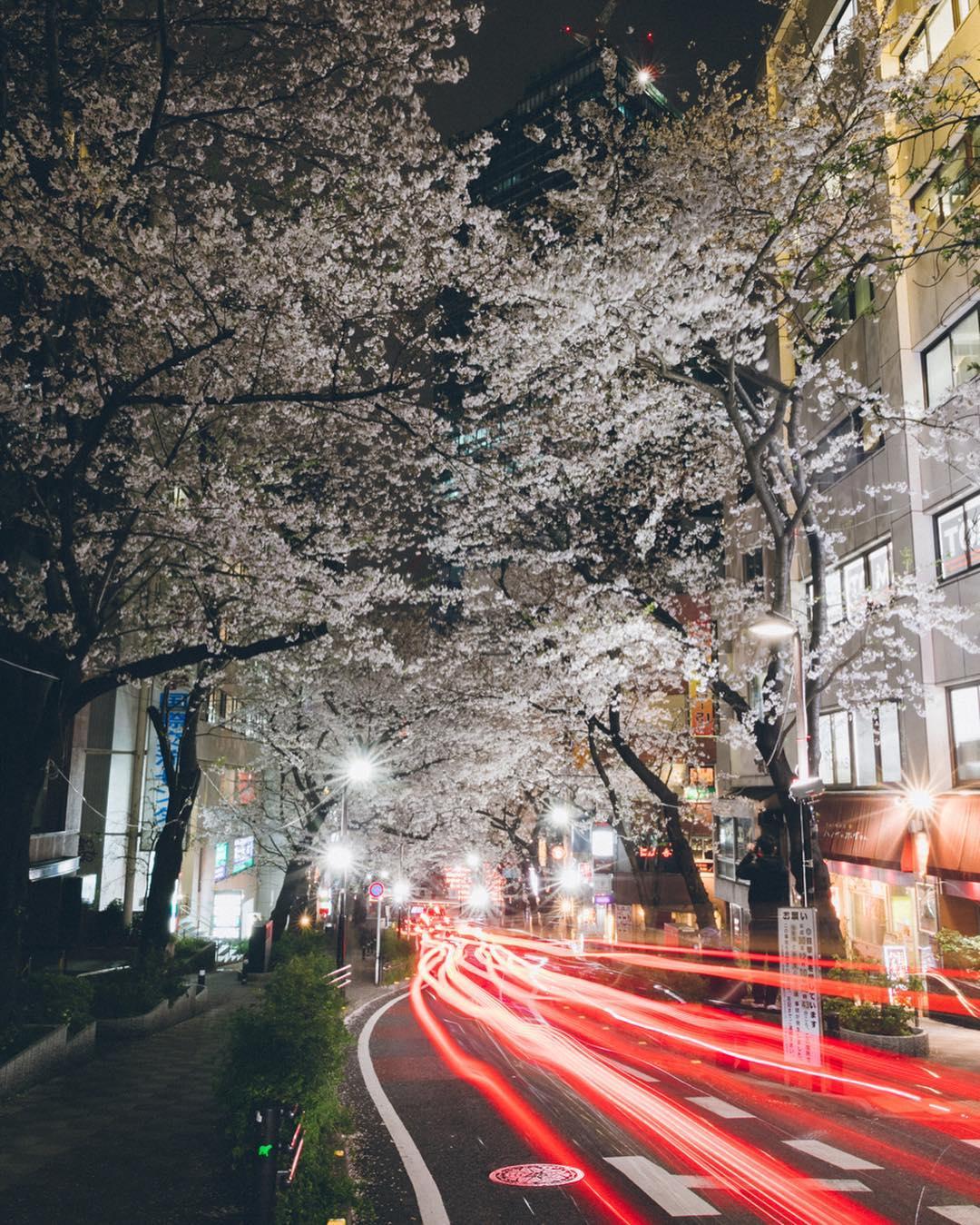 Волшебная Япония на снимках Юма Ямашиты