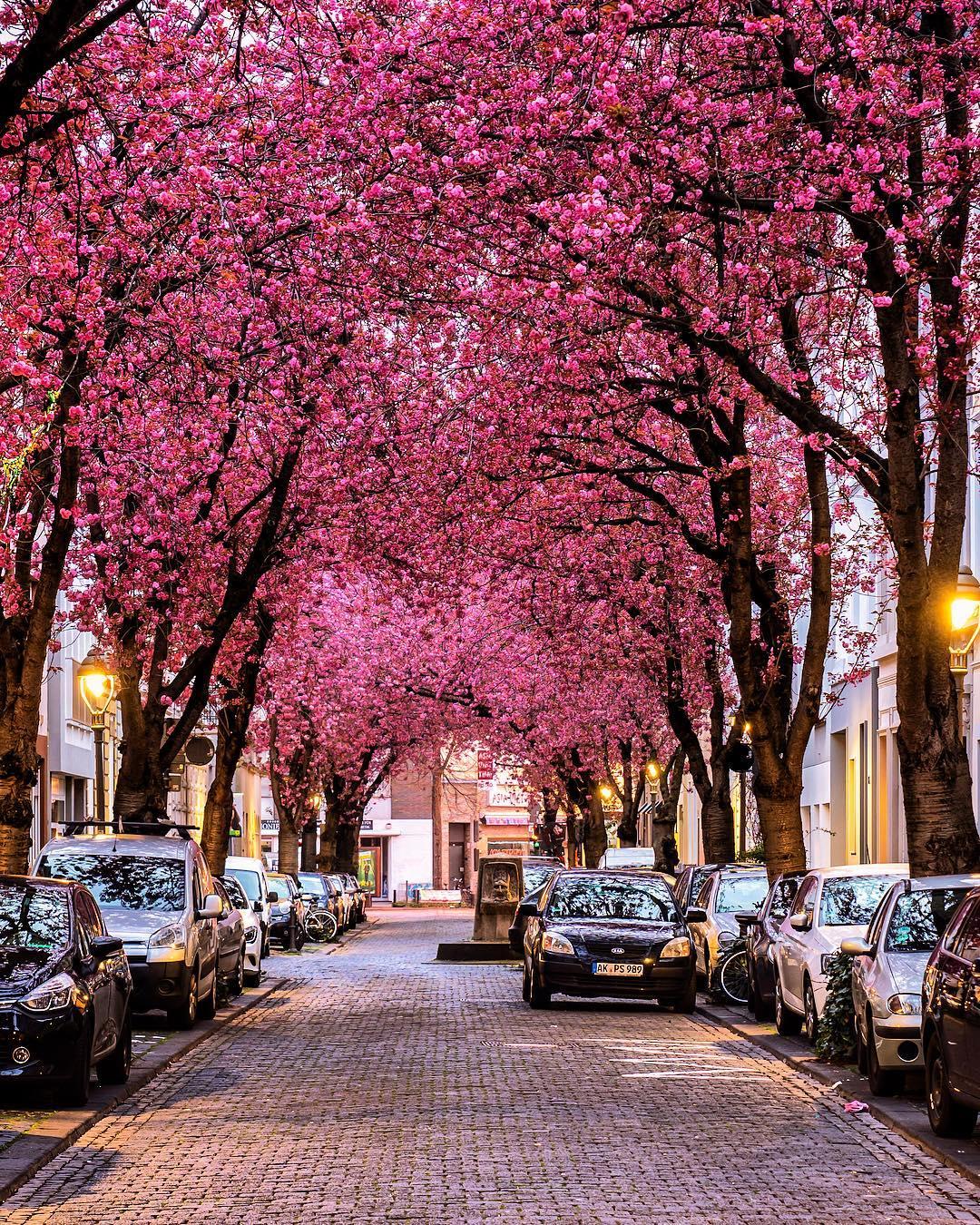 Городские и уличные снимки от Пьера Брауэра