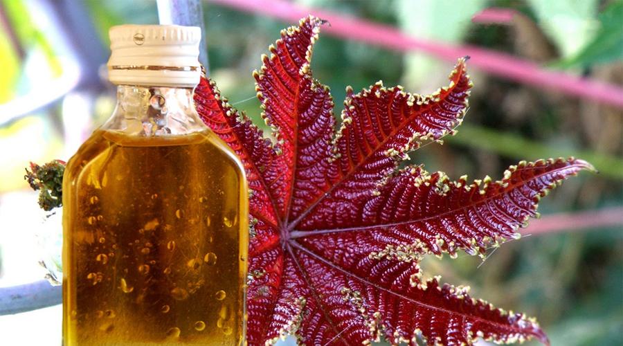Скрытая польза касторового масла от разных проблем