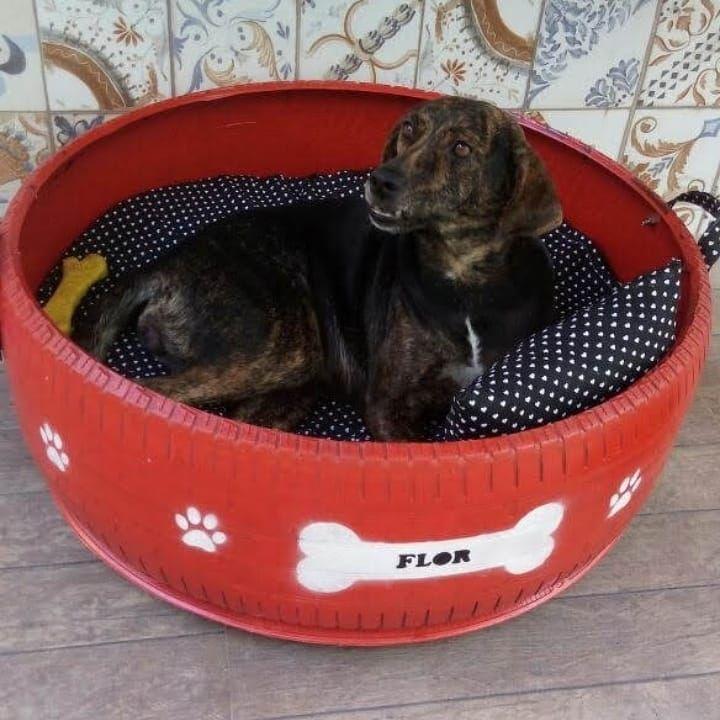 Парень делает лежанки для животных из старых выброшенных шин