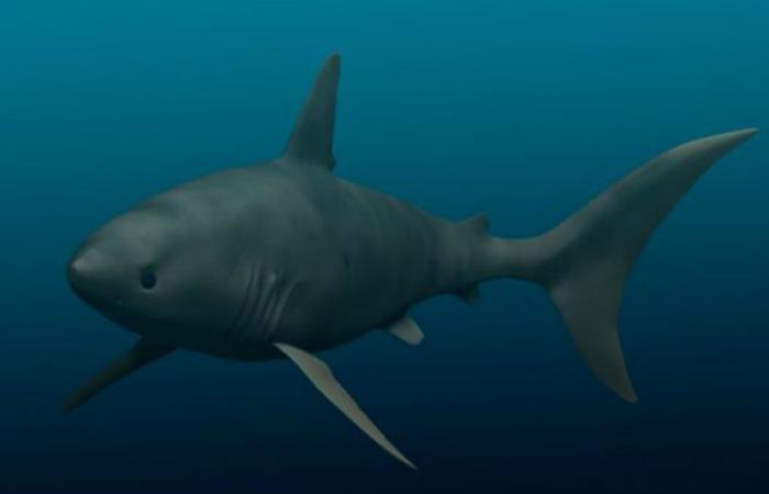 Невероятные подводные монстры, когда-то правившие океаном
