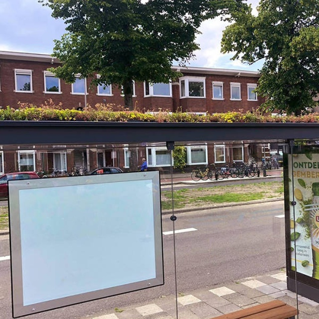 Новые автобусные остановки в Нидерландах помогают спасти пчел