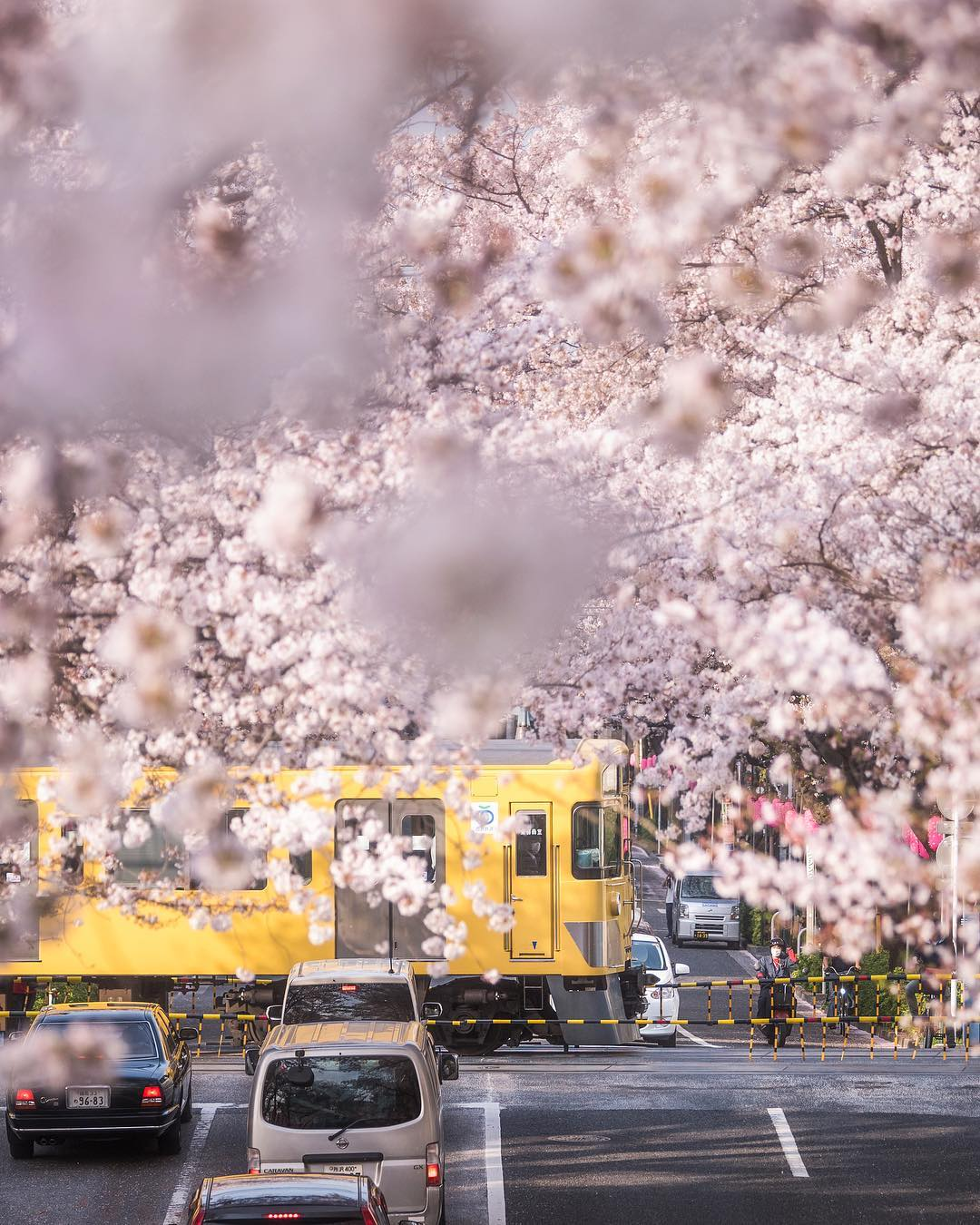 Природные и городские пейзажи Японии на снимках Хироки Фурукавы