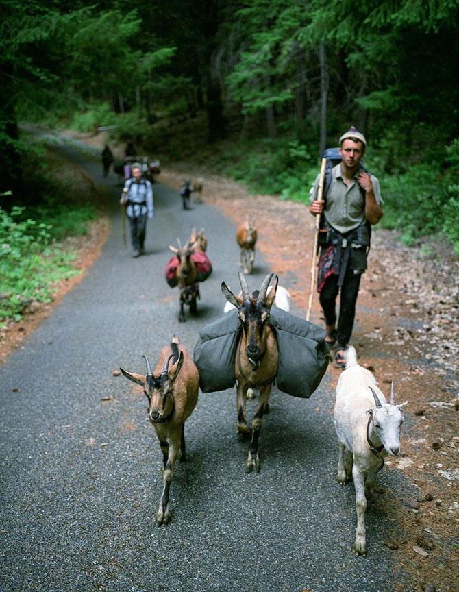 Как живут современные охотники и собиратели в США
