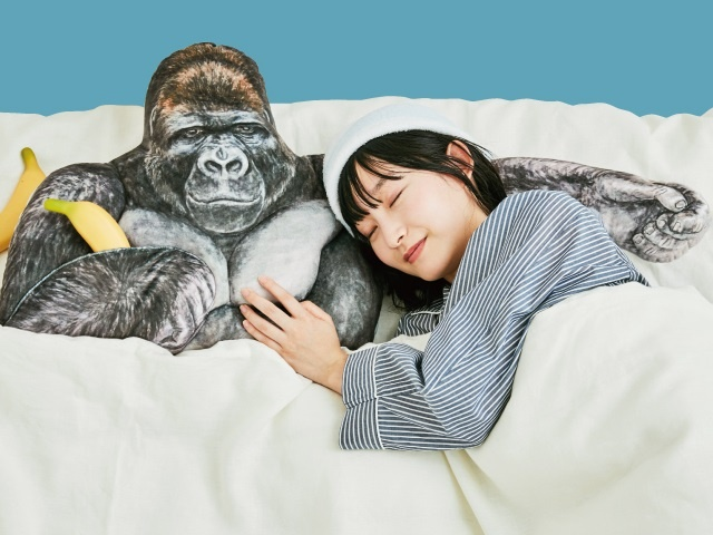 Необычная подушка в Японском магазине