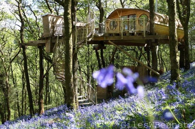 Подборка идеальных домов на деревьях