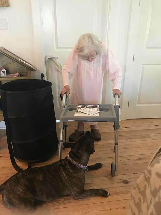 Уличный пёс, который стал помощником для 99-летней женщины