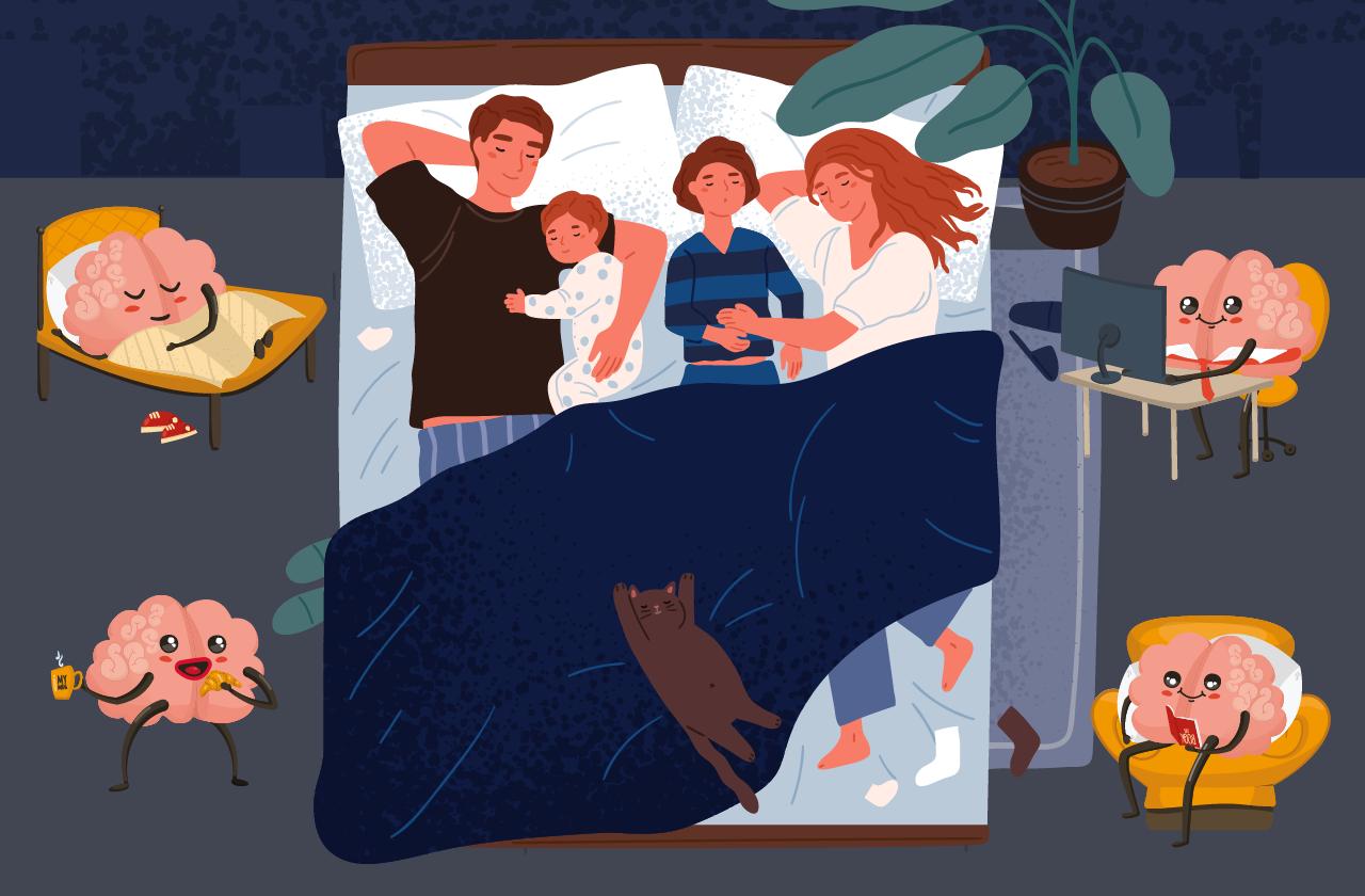 Что делает наш мозг во время сна