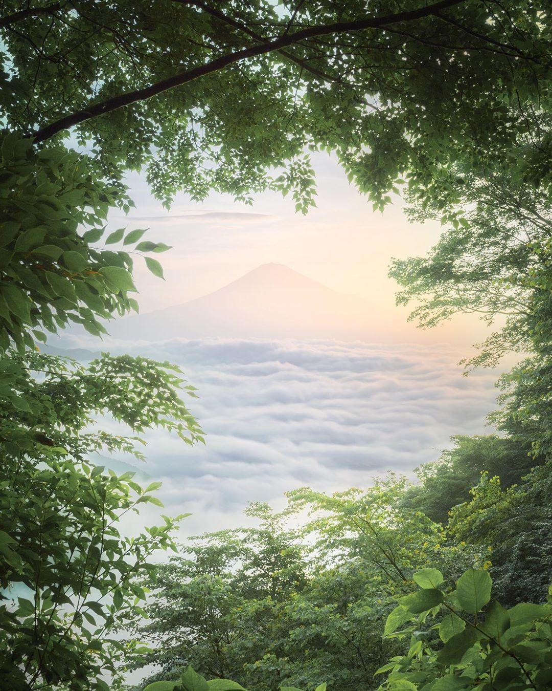 Городские и природные пейзажи Японии от Мицуки Кояма