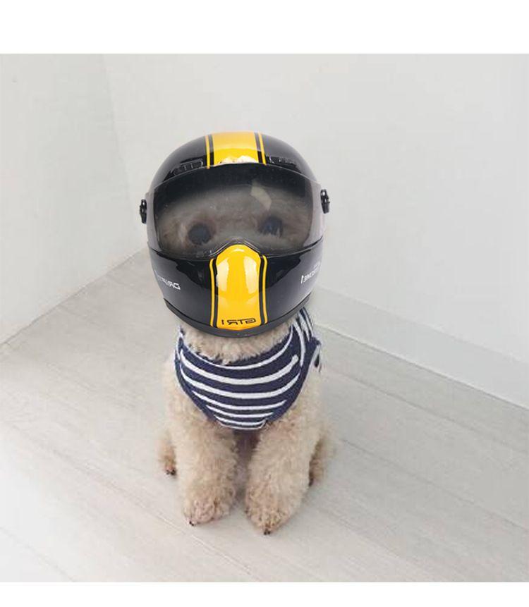 Мотошлем для собак и котов из Китая
