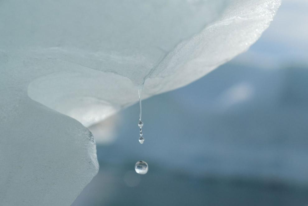 Как тают ледники Гренландии