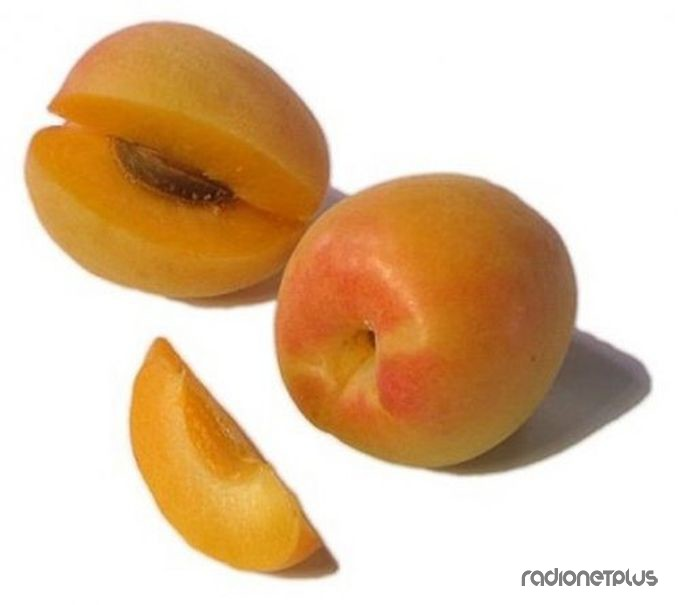 Удивительные фрукты и ягоды