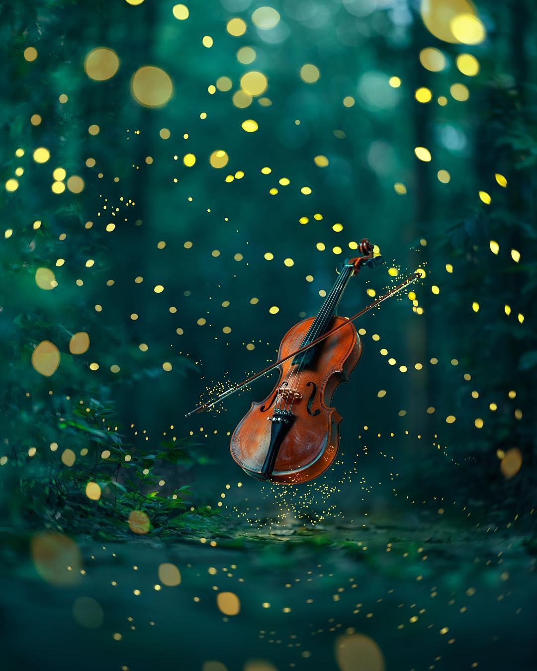 Волшебные макроснимки от Ашрафула Арефина