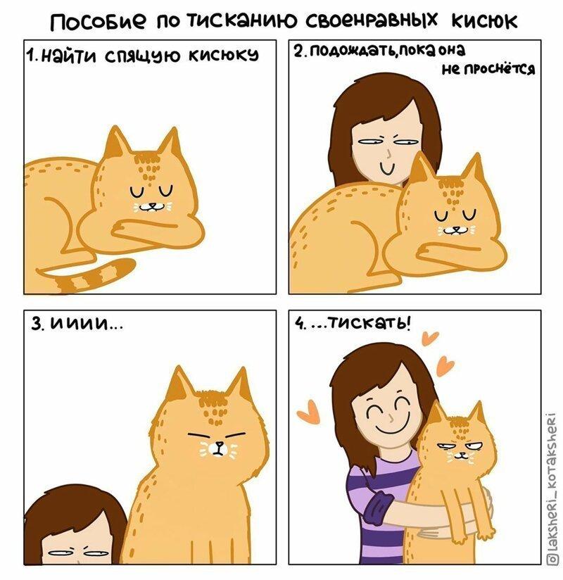 Художница рисует забавные комиксы о жизни с котом