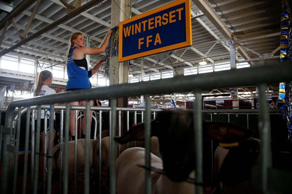 Ежегодная ярмарка достижений фермеров штата Айова