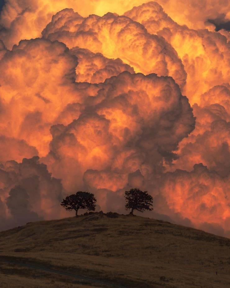Эти снимки доказывают, что природе ещё есть чем нас удивить