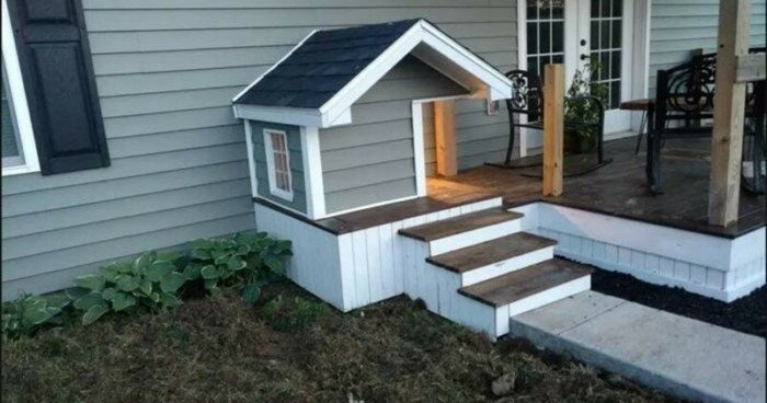 Классные будки для собак