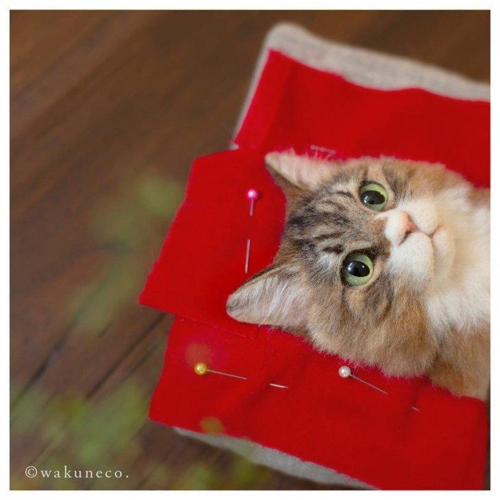 3D-портреты кошек от мастера Вакунеко из Японии