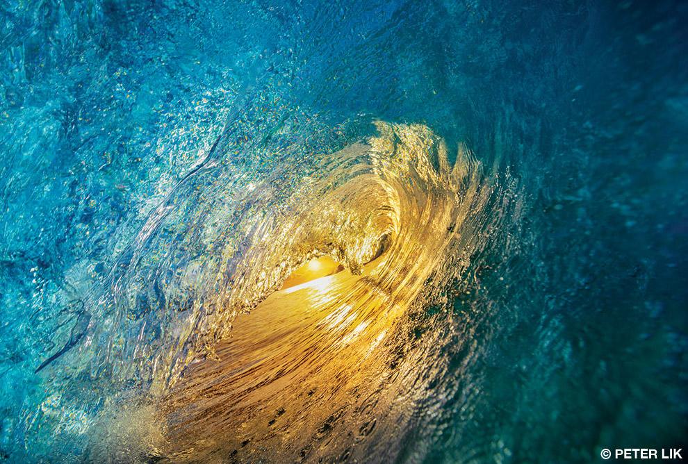 Победители конкурса подводной фотографии