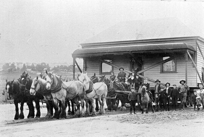 Как век назад перемещали целые города с помощью лошадей
