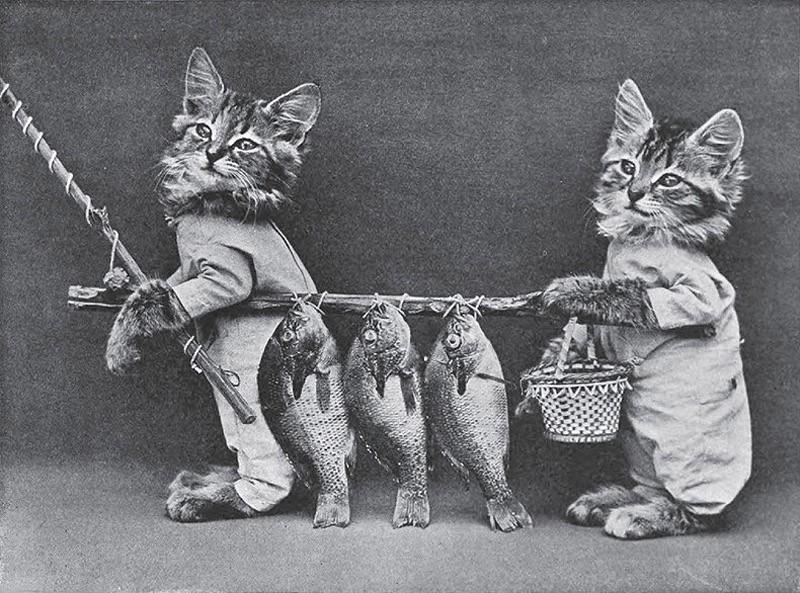 Животные ретро картинки