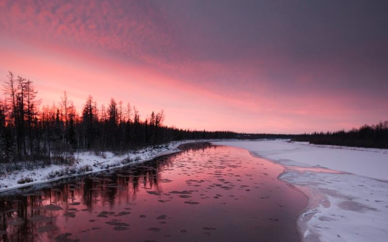 10 мест, где высока вероятность встретить снежного человека