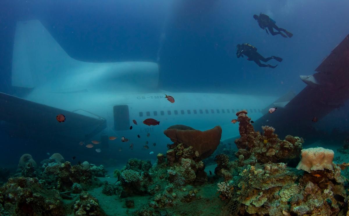 В Иордании затопили самолет, чтобы он стал развлечением для дайверов